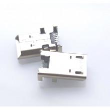 Acer Iconia Tab 8 W1-810 Micro USB lizdas